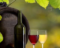 Rundfahrt durch das Fränkische Weinland